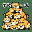 Cute chubby shiba inu for shiba lover 2