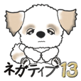Shih Tzu (Negative words) vol.13