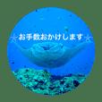 *宮古島4*