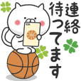 The cat loves basketball!4