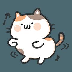 乳加小P貓