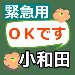 Emergency use[kowada]name Sticker25
