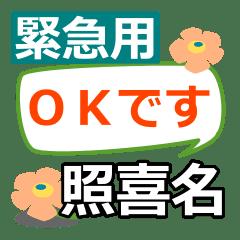 Emergency use[terukina]name Sticker25
