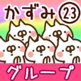 The Kazumi23