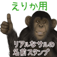 Erika Monkey's real name Sticker