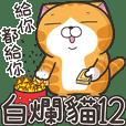 Lan Lan Cat 12