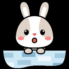 Oh My Rabbit.
