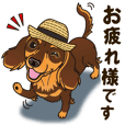 A sticker willingly. Dachshund (C&T) 3