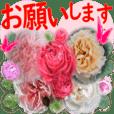 よく使う日常挨拶♥咲き誇る薔薇