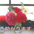 花と緑の日常写真 大人のあいさつ