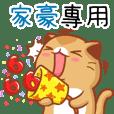"""Niu Niu Cat-""""JIA HAO"""""""
