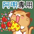 """Niu Niu Cat-""""A MING"""""""