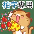 """Niu Niu Cat-""""BO YU"""""""