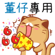 """Niu Niu Cat-""""DONG ZAI"""""""