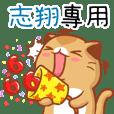 """Niu Niu Cat-""""ZHI XIANG"""""""