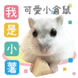 Cute hamster-Small French fries.