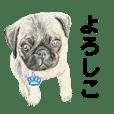 クーパーとお友達スタンプ(日本語)