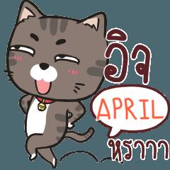 APRIL charcoal meow e