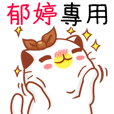 """Niu Niu Cat-""""YU TING""""2"""