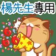 """Niu Niu Cat-"""" Mr. Yang"""""""