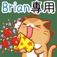 """Niu Niu Cat-""""Brian"""""""