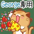 """Niu Niu Cat-""""George"""""""