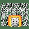 tanuchan precious cat