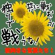 ポジティブな言葉にひまわりの花をそえて03