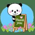 Baby panda / English