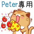 "Niu Niu Cat-""Peter"""