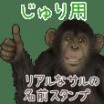 Juri Monkey's real name Sticker