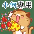"""Niu Niu Cat-""""XIAO HE""""R"""
