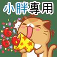 """Niu Niu Cat-""""XIAO PAN""""R"""