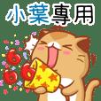 """Niu Niu Cat-"""" XIAO SHE""""R"""