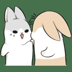 ㄇㄚˊ幾兔(動幾來)