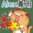 """Niu Niu Cat-""""Alex"""""""