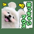 愛犬スタンプ〜マウスver.〜チームB