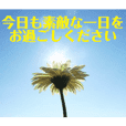 flower photo messages 1 (Japanese)