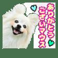 愛犬スタンプ〜マウスver.〜チームA