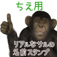Chie Monkey's real name Sticker