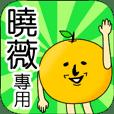 【曉薇】專用 名字貼圖 橘子