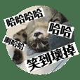 MioWarabimochi_20180928181715