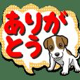 Wanko-Biyori JRT-Jack Russell terrier 8