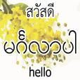 Myanmar-Thai-English for chat