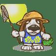 Basset hound 23(dog)
