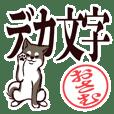 Black Shiba Osamu - large letters -