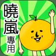 【曉嵐】專用 名字貼圖 橘子