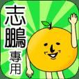 【志鵬】專用 名字貼圖 橘子