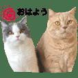KOTARO&HARU
