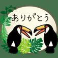Toco Toucan and Botanical Garden